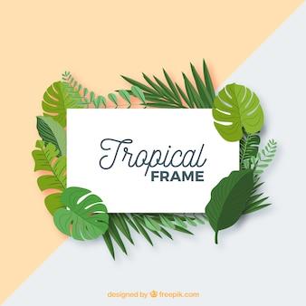 Lässt rahmen mit tropischen anlagen