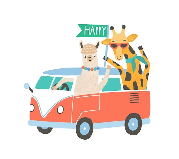 Lama und giraffe in der flachen vektorillustration des minivans. nette freunde auf roadtrip-zeichentrickfiguren