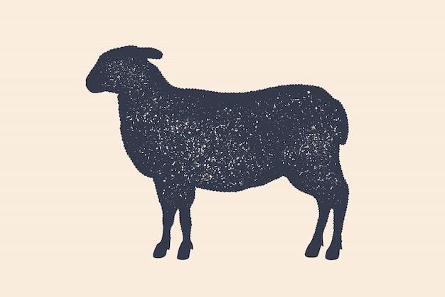 Lamm. weinleselogo, retro-druck, plakat für metzgerei, schafsilhouette. logo-vorlage für fleischgeschäft, fleischerei. silhouette schaf, weißer hintergrund. illustration