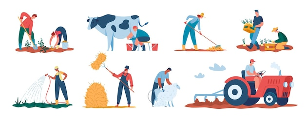 Landarbeiter, die pflanzen ernten, landwirte, die auf dem feld arbeiten, die pflanzen gießen, die schafe scheren vektor