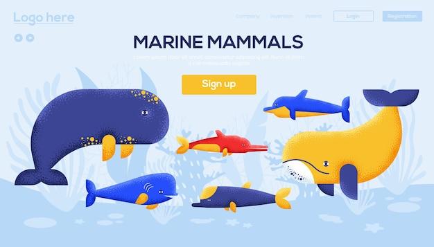 Landingpage für meeressäugetiere