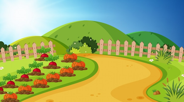 Landschaftshintergrund des gemüsegartens