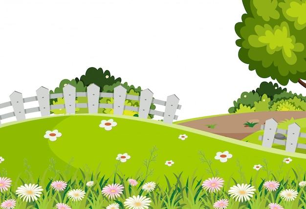 Landschaftshintergrund des grünen grases auf hügel