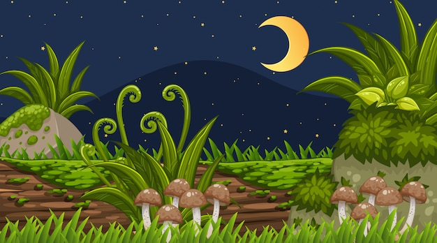 Landschaftshintergrund des parks nachts