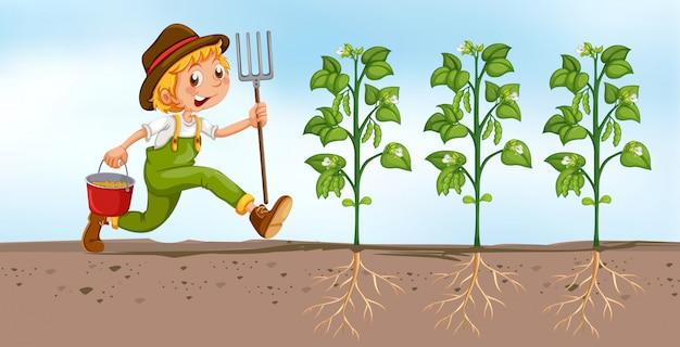 Landwirt, der auf dem gebiet pflanzt