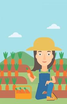 Landwirt, der karotten sammelt