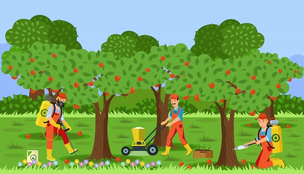 Landwirte, die in der flachen illustration des apfelgartens arbeiten