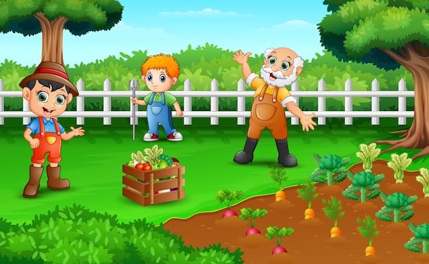 Landwirte ernten die ergebnisse ihrer plantagen