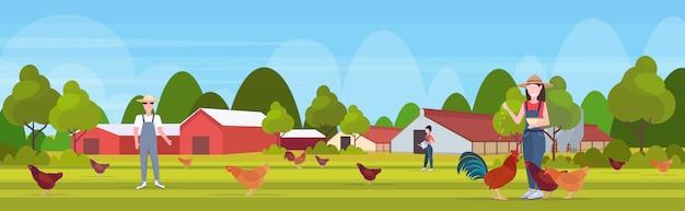Landwirte füttern hühner, die sich um haustiere kümmern freilandhaltung zucht hed für lebensmittel geflügelfarm öko-landwirtschaftskonzept ackerland landschaft landschaft hintergrund in voller länge horizontal