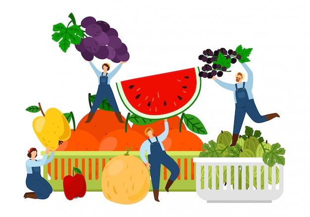 Landwirte und früchte. erntezeitvektorillustration.