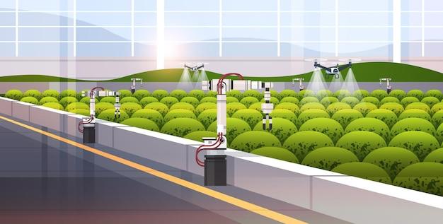 Landwirtschaftliche drohnen-spritzgeräte quad-copter, die fliegen, um chemische düngemittel im gewächshaus zu versprühen smart farming-innovationstechnologie