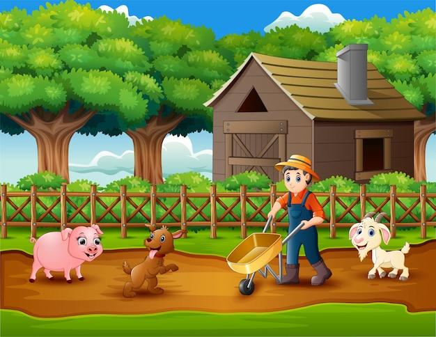 Landwirtschaftliche tätigkeiten auf farmen mit tieren