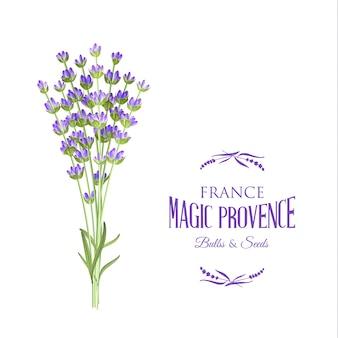 Lavendel elegante karte.