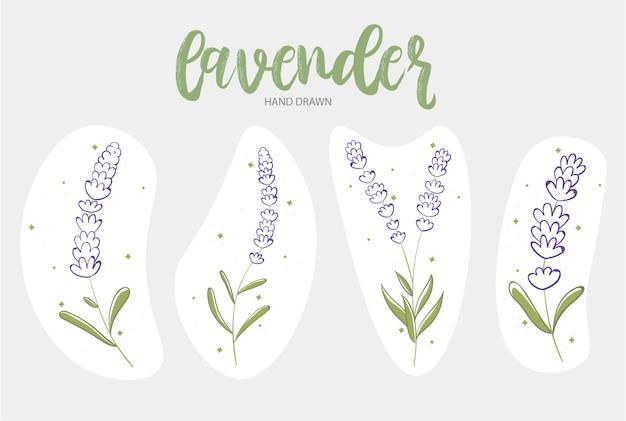 Lavendel handgezeichnetes set