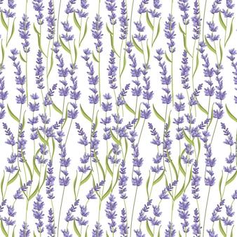 Lavendel nahtlose muster