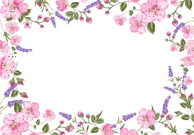 Lavendel provence frame hintergrund.