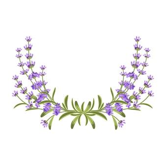 Lavendelblüten mit grünen blättern