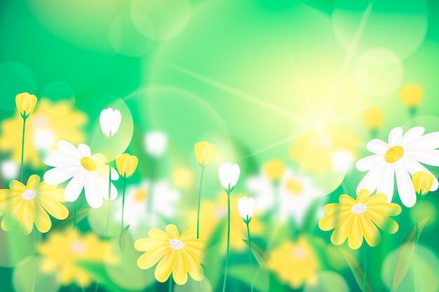 Lebhafter grüner realistischer unscharfer frühlingshintergrund