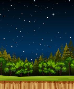 Leere nachthimmel-hintergrundszene mit kiefern im wald