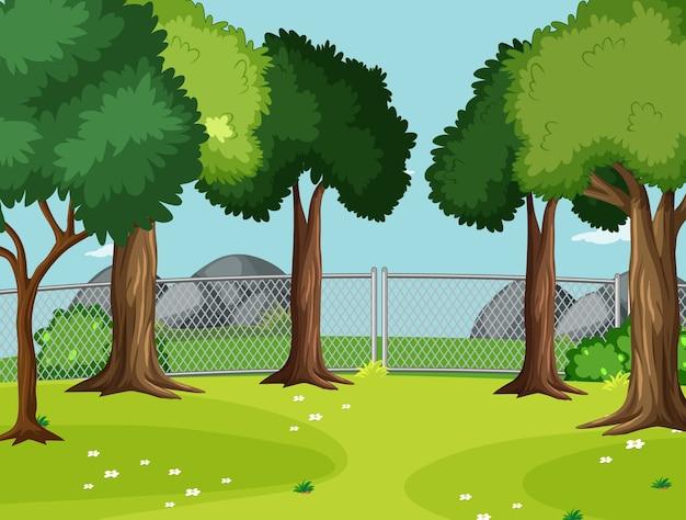 Leere szene im park mit großen bäumen