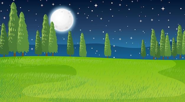 Leere wiesenlandschaftsszene in der nachtzeit