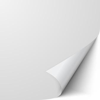 Leeres blatt papier mit verdrehter ecke
