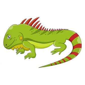 Leguan-cartoon