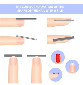 Lehrbuch über die bildung von nägeln. die form eines quadratischen nagels.