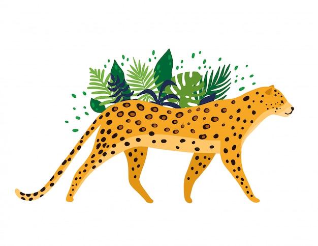 Leopard getrennt im weißen hintergrund