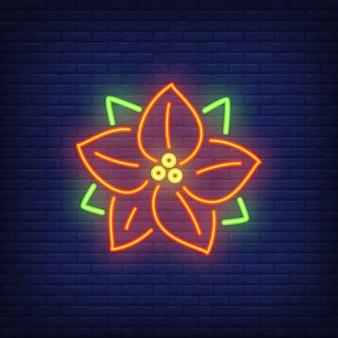 Leuchtreklame mit roter poinsettia. festliches element. feier-konzept