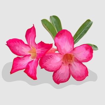 Lilienblume realistische handgezeichnete illustrationen und vektoren
