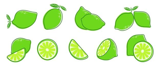 Limette schneiden. frische zitrusfrüchte, scheibe und blätter. isolierte grüne zitrone illustration, saftige organische frische detox-vitamin-vektor-illustration. frucht zitrone vegetarisch geschnitten, vitamin detox und erfrischend