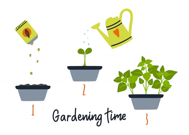 Line sprout und pflanzenanbau.