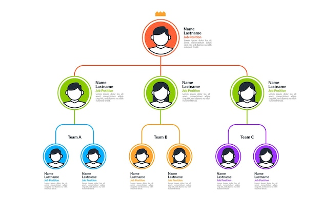 Lineares flaches organigramm infografik mit foto