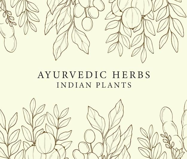 Linie kunst ayurvedischer pflanzenhintergrund