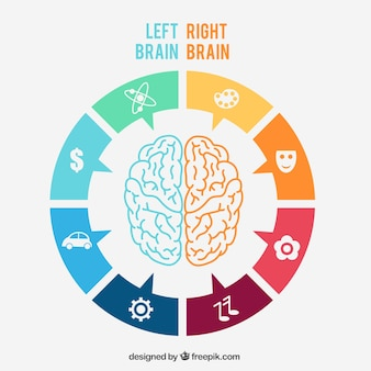 Linke und rechte gehirninfografik