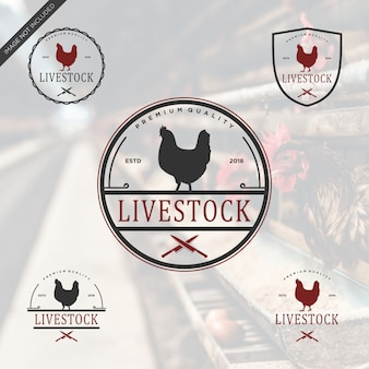 Live-lager logo vintage