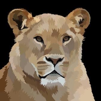 Löwenporträtillustration