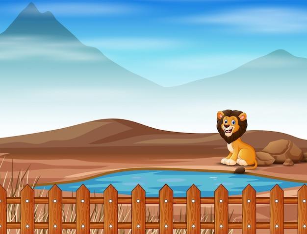 Löwentierkarikatur, die auf dem trockenen land lebt