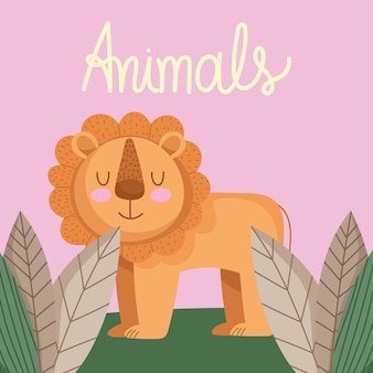Löwentierkarte