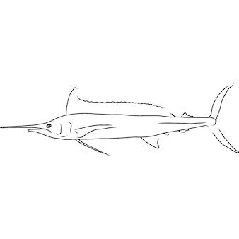 Longbill spearfish hand skizzierte handgezeichnete vektor-clipart