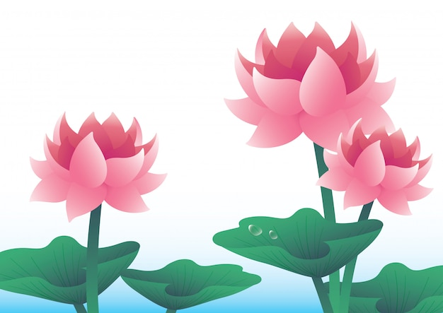 Lotus seerose-illustrationsvektorhintergrund