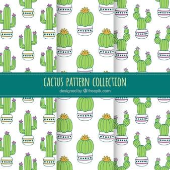 Lovely packung kaktus muster