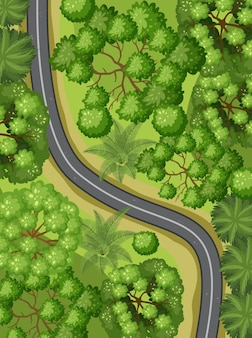 Luftbild mit straße durch die waldlandschaft