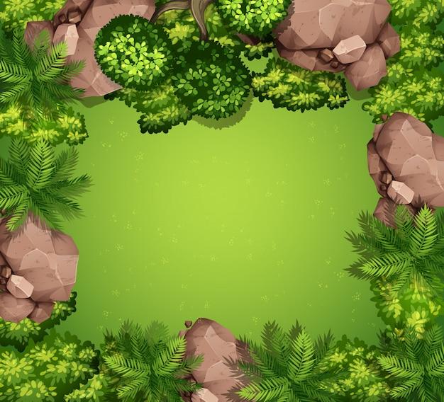 Luftbild von pflanzen und felsen