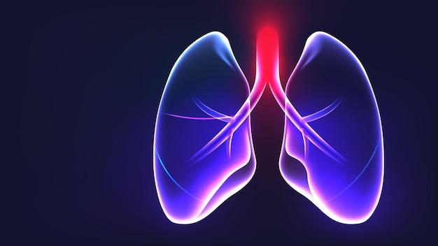 Lungenanatomie teil glühendes licht xray abstraktes konzept vektor-illustration