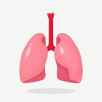 Lungensymbol. menschliches inneres organ. anatomie, medizinkonzept