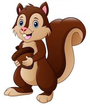 Lustige eichhörnchenkarikatur, die eine eichel hält