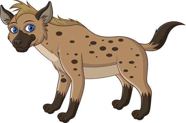 Lustige hyäne lokalisiert