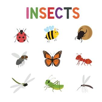 Lustige insekten